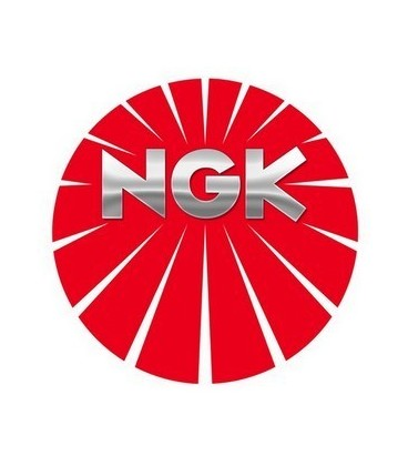 NGK BKR6E