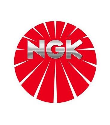 NGK IZFR6F11
