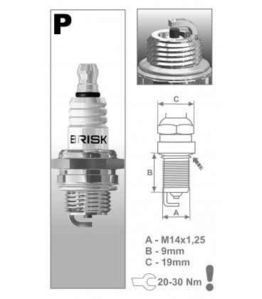 BRISK P17