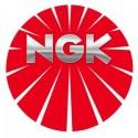 NGK BPR6EP-8