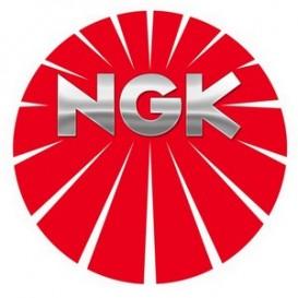 NGK BPR6EVX